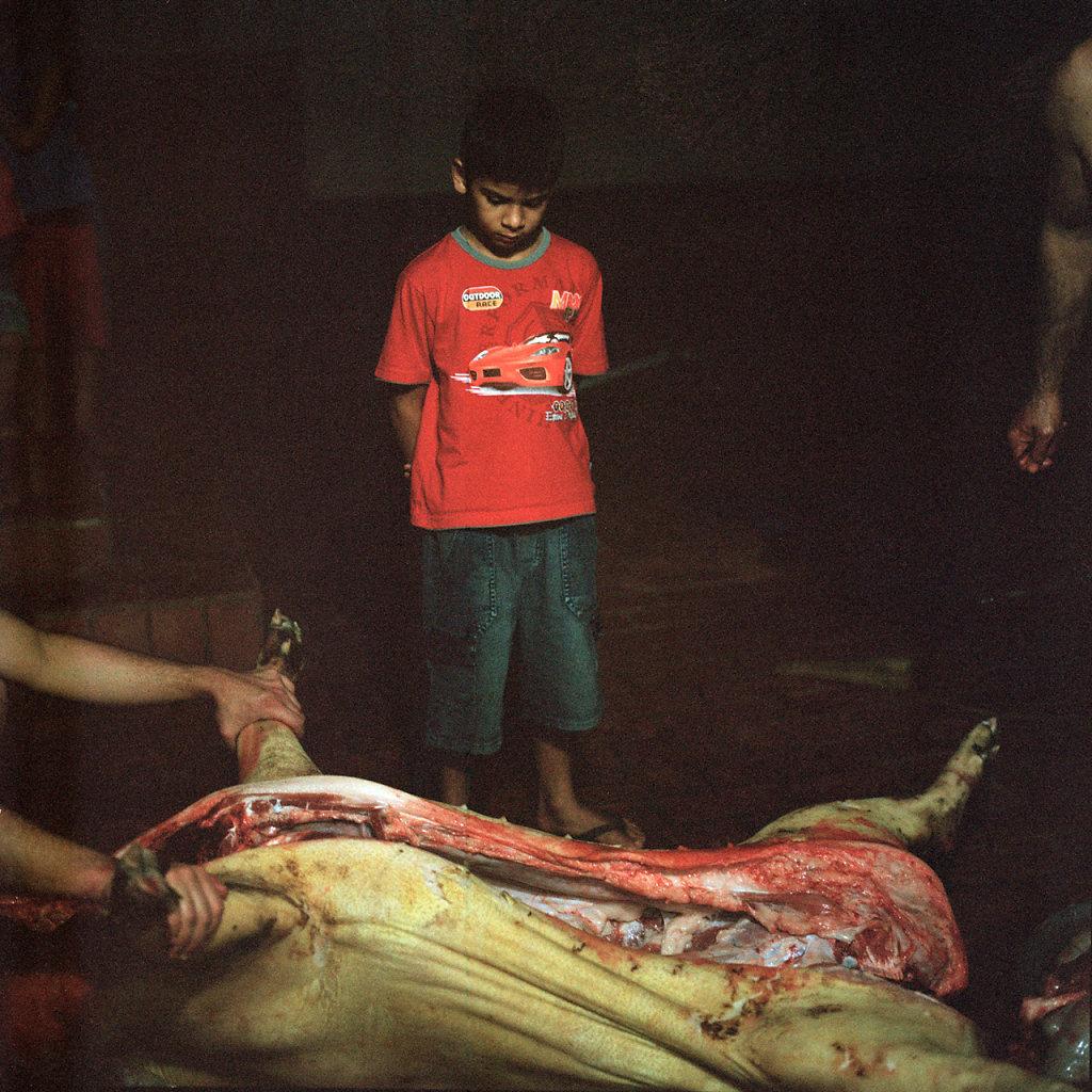 anita-shapes-1494.jpg